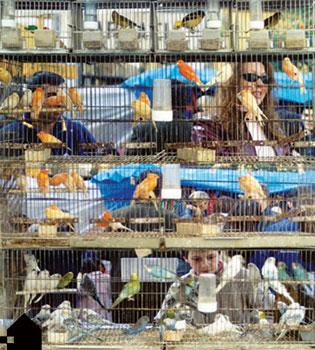 """""""post"""":http://www.laciudadviva.org/blogs/?p=4613 inicial sobre la situación actual de la vivienda y la necesidad de entenderla como un proceso"""